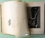 1903 Песнь о Гайавате. Иллюстрированное издание для детей. Перевел И.Бунин., фото №7