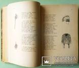 1903 Песнь о Гайавате. Иллюстрированное издание для детей. Перевел И.Бунин., фото №8
