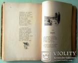 1903 Песнь о Гайавате. Иллюстрированное издание для детей. Перевел И.Бунин., фото №13