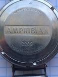 Восток Амфибия ушастая. photo 7