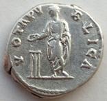 Денарий имп. Адриан 137 г н.э. (24_31) фото 6