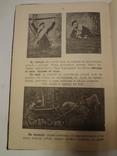 1899 Книга о оружии для Русской Императорской Армии