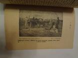 1926 Бібліотека Українського Степового Селянина багато фото photo 4