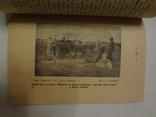 1926 Бібліотека Українського Степового Селянина багато фото photo 6