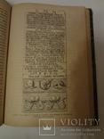 1887 Холмская Русь с хромолитографиями гравюрами и картой, фото №7