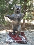 Медведь бронза (Bear bronze)