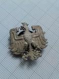 Серебряная петлица, 65-й Старогардский пехотный полк (г. Грудзёндз, Польша)