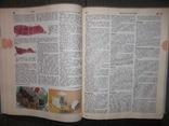 Краткая энциклопедия домашнего хозяйства.1990 год., фото №8