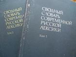 Сводный словарь современной русской лексики (2 тома), фото №2