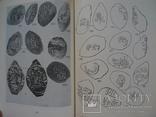 Монеты нижегородского княжества (1989), фото №8
