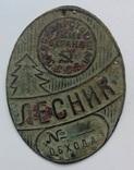 Лесник. Государственная лесная охрана СССР photo 1