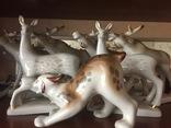 Фигурки (4 лося, 2 косули , 1 рысь )