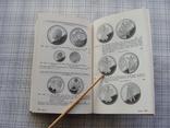 Evro Munzkatalog. Каталог монет евро., фото №11