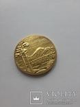 Мужієво 99 перше українське золото, фото №3
