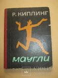 Маугли Р.Киплинг, фото №2