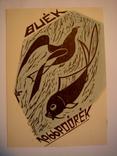 Литографическая открытка. 1966г. photo 1