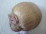 Красная Шапочка паричковая на резинках photo 5