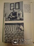 1958 Китай для СССР Эффектная книга Соцреализм, фото №11