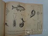 1896 Геология сельское хозяйство зоология с 18 таблицами