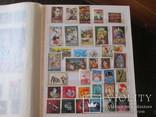 Распродажа коллекции,большой альбом photo 7