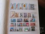Распродажа коллекции,большой альбом photo 9