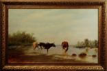 Картина маслом на холсте ′Коровы на водопое′ 2007 г., фото №2