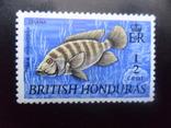 Фауна моря. Брит. Гондурас.  Рыба.  марка  MNH, фото №2