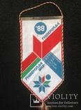 Вымпел спартакиада Белоруссии 1988 год, спорт ссср, фото №2