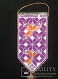 Вымпел спартакиада Белоруссии 1988 год, спорт ссср, фото №3