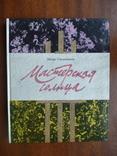 Мастерская солнца (рассказы о советских художниках) 1990р., фото №3