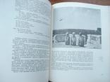 Мастерская солнца (рассказы о советских художниках) 1990р., фото №5