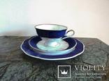 Чайное антикварное трио чашка блюдце тарелка клеймо Von Schierholz Германия photo 6