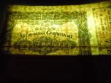Кредитный билет Державной Скарбници на 200 гривень 1918 года. photo 12