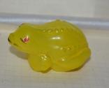 Жаба, фото №3