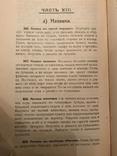 1911 Интеллигентная Повариха Эксклюзив photo 7