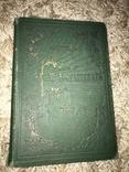 1888 Идиот Достоевского с красивой обложкой