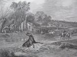 1847г. Гравюра Удачный бросок (Охота с лассо на оленя) 19 век