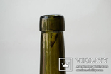 Пивная бутылка №2. Дивишека., фото №6