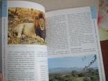 Танзания и Занзибар (путівник) 2009р., фото №6