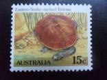 Фауна. Австралия. Черепаха.  марка MNH, фото №2