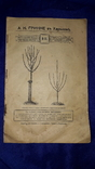 1900 Каталог садоводства А.К.Гринке в Харькове