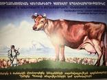 Каталог Плакатов Страхование Жизни Большой