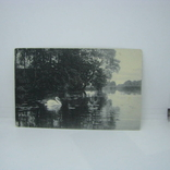 Открытка Европа. Лебедь на озере. чистая, фото №2