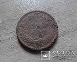 1 цент 1882 США (д.2.4)~, фото №4