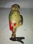 Попугай с Айболита, фото №2