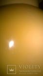 Кукла-пупсСССР,целлулоид photo 6