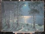 """Светлая ночь"" х.м.,70х100см.,1915г.,авт., фото №2"