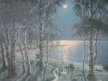 """Светлая ночь"" х.м.,70х100см.,1915г.,авт., фото №3"