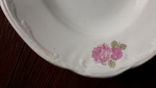 Красивое блюдо с розами 1920х годов Буды, фото №5