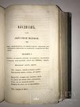1847 Сочинения Княжнина Красивые Переплёты, фото №7